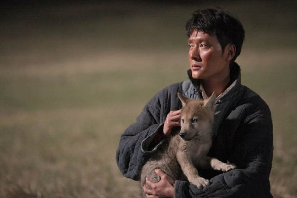 In the Chinese film Wolf Totem, Chen Zhen (played by William Feng Shaofeng) adopts a wolf pup, against the wishes of his Mongolian mentor.