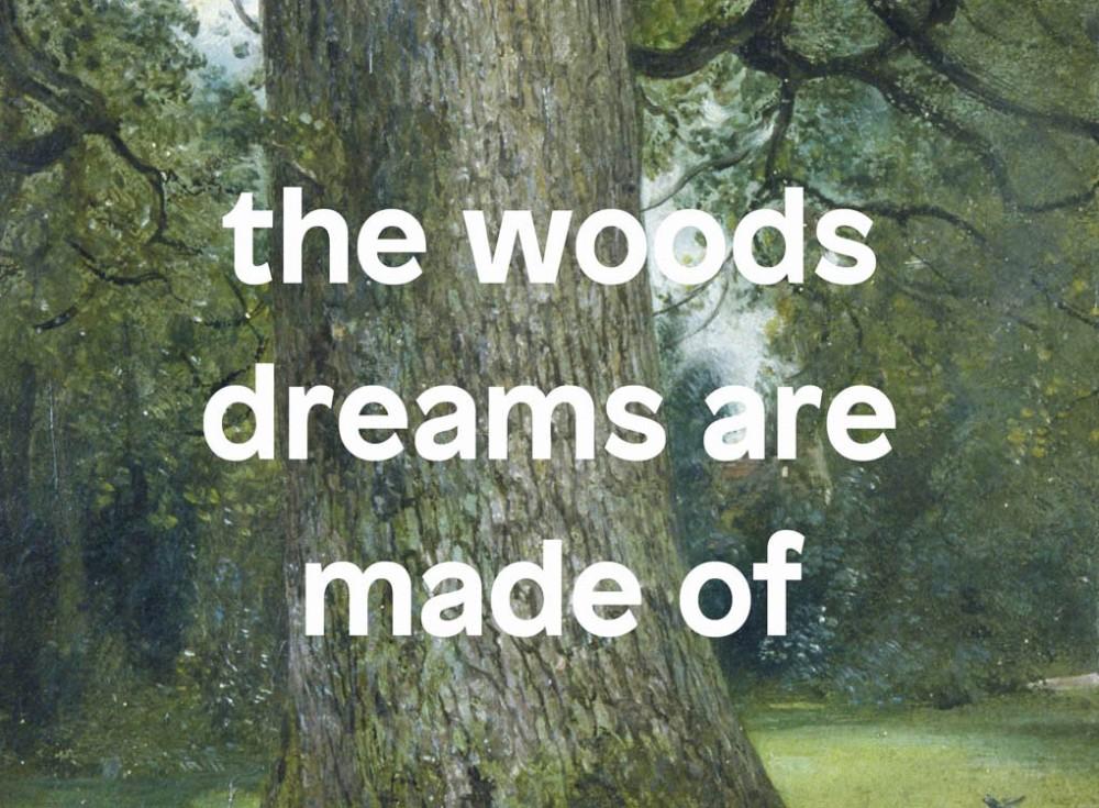 RIDM Bois Woods