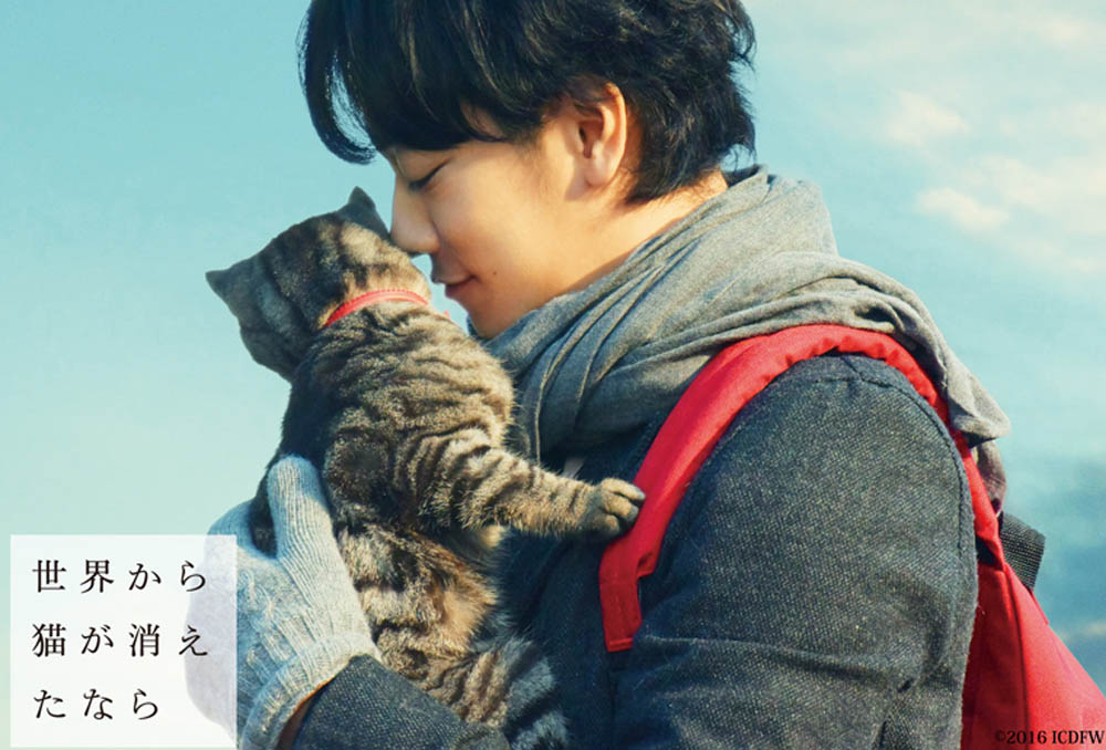 Aw, can't you just imagine that soft fur against your face? Takeru Satoh is the main human star of the Japanese film If Cats Disappeared From the World.